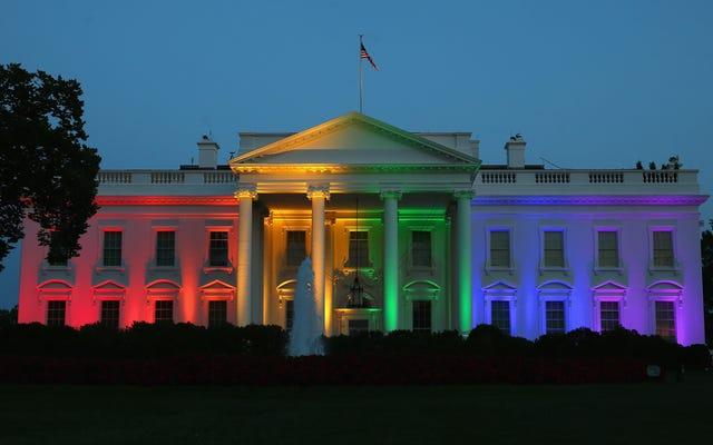 Trump Win galwanizuje NOM, aby uczynić życie piekłem dla Amerykanów LGBT