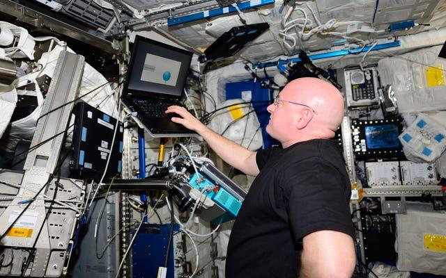 Die endgültigen Ergebnisse der NASA Twins-Studie zeigen, wie sich Scott Kelly nach einem Jahr im Weltraum verändert hat