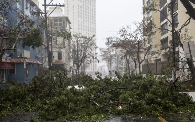 ハリケーンマリアは文字通りプエルトリコのすべてに力をノックアウトしました