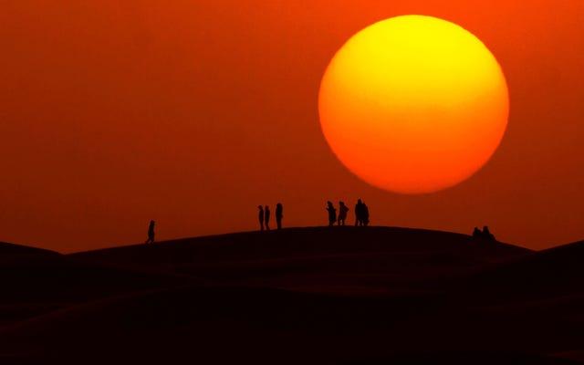 Un tercio de la población mundial podría quedar cubierta por un calor similar al del Sahara para 2070