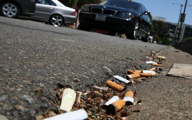フィルター付きたばこは最悪のタイプの汚染の1つであり、私たちはそれらを禁止すべきであると専門家は主張します