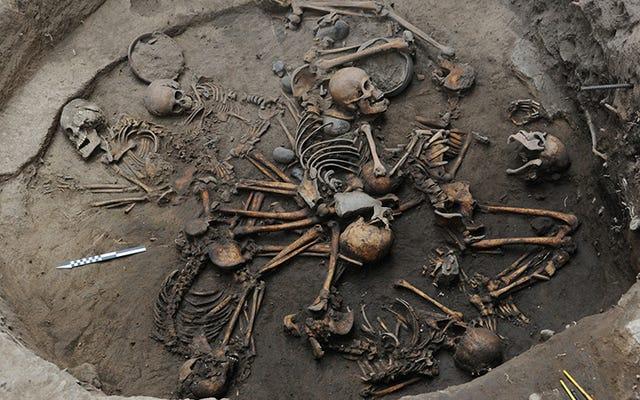 メキシコで発見された奇妙なスパイラル層に配置されたスケルトンのある古代の墓