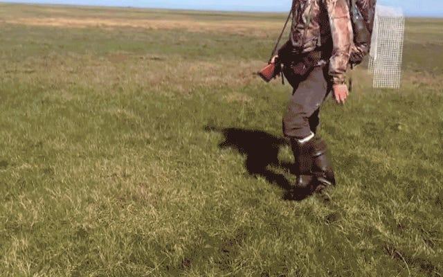 यह उछालभरी साइबेरियन मिट्टी हमारे ग्रह के लिए एक परेशान करने वाला संकेत है
