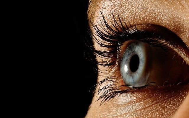 หน้าจอที่หวาดกลัวกำลังทำลายดวงตาของฉันแล้วคุณล่ะ?