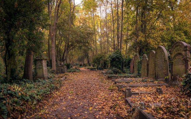 墓地の向こうから:墓地テロワールの豊かなルーツ