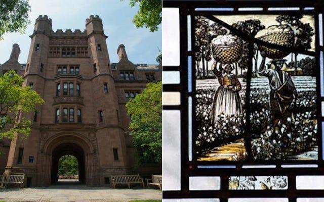 Yale, Köleliği Gösteren Pencereyi Kıran Bulaşıkçıya İşini Geri Verdi