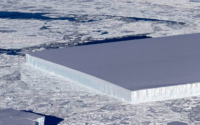 यह विशाल, पूरी तरह से आयताकार बर्फ की चादर प्राकृतिक है: यह है कि कैसे सारणीदार हिमखंड बनते हैं