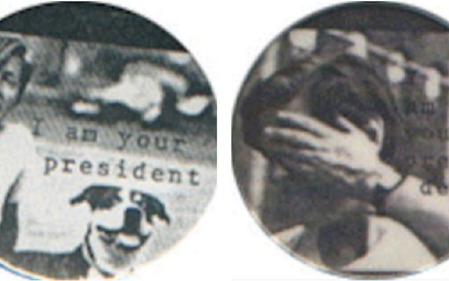 アイリーン・マイルズの革命的な「公然と女性」の書き込み中の大統領選挙運動を振り返る