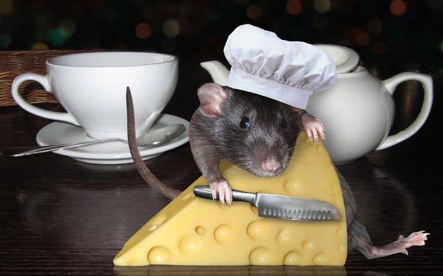 मालिक का कहना है कि डीसी पिज़्ज़ेरिया में चूहों के झुंड का वायरल वीडियो एक दिखावा था