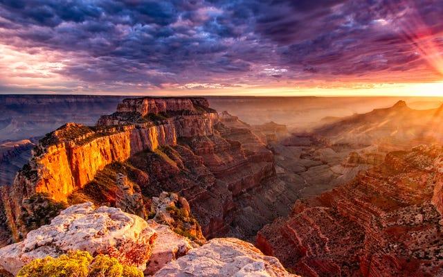 国立公園は2020年のこの5日間は無料になります