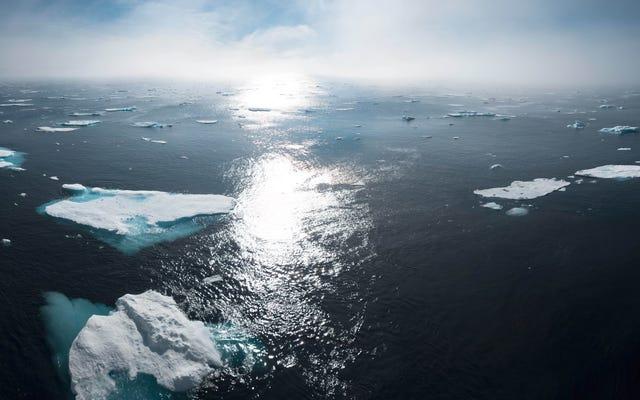 Arkadaşlarınız ve Ailenizle İklim Krizi Hakkında Nasıl Konuşabilirsiniz?