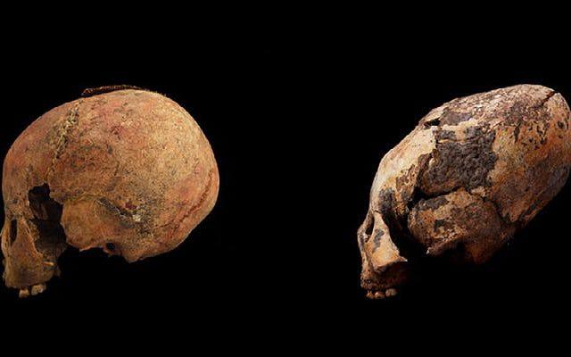 11 tengkorak baru yang memanjang ditemukan di kuburan berusia seribu tahun di Tiongkok