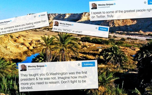वेस्ली स्निप्स का ट्विटर खराब इंटरनेट के रेगिस्तान में अच्छाई का नखलिस्तान है