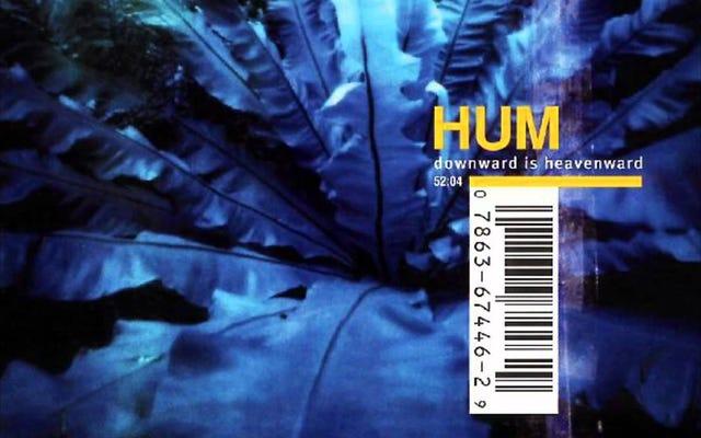 ハム—「チーター島」