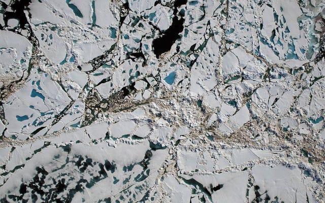 Рекордный в этом году арктический расплав - проблема для всех