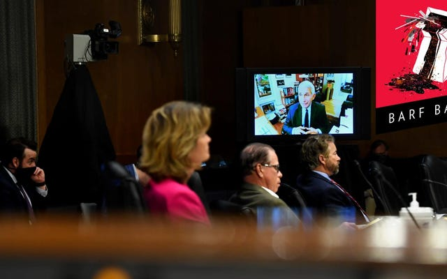 すべての経済-角質上院議員はファウチ公聴会でそれを生で溺愛している