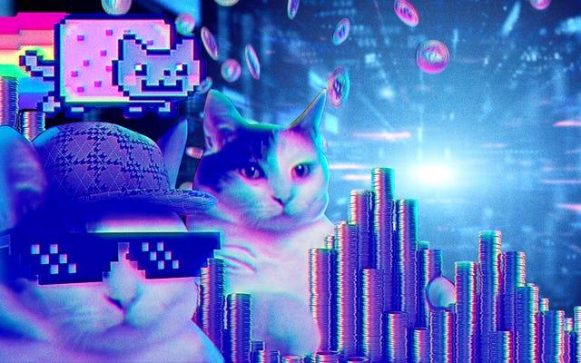 Ekor dua kucing: Pembuat internet yang salah mengendalikan meme mereka dengan NFT