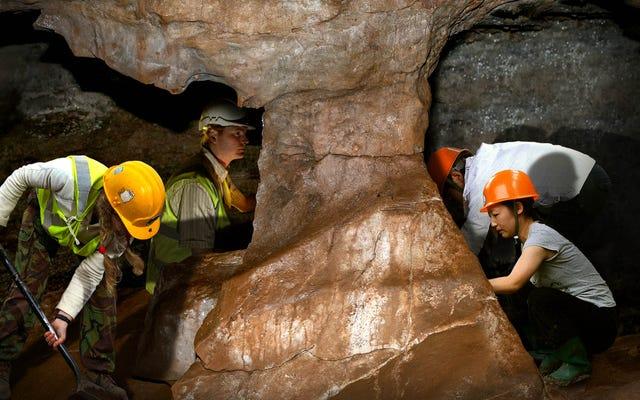 考古学者は、地球の反対側から彼らに向かって掘っている考古学者の別のチームを発見します