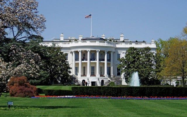 Y ahora la Casa Blanca se ha subido al tren de la IA