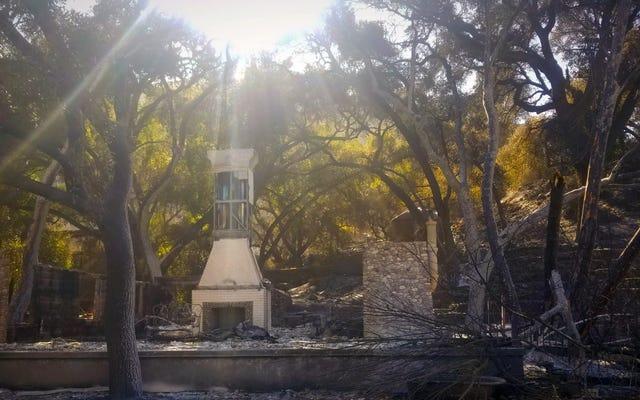 Przystań dzikiej przyrody na obrzeżach Los Angeles zawodzi od bezprecedensowych zniszczeń spowodowanych ogniem