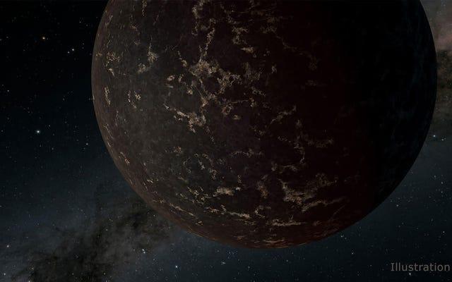 実験は、いくつかの生命が太陽系外惑星のような条件で生き残ることができることを示しています