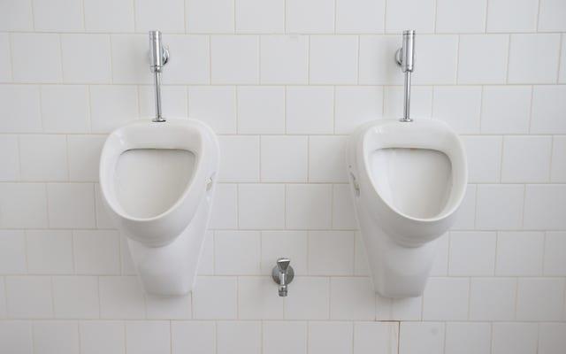 เขตการศึกษาจอร์เจียกลับนโยบายห้องน้ำแบบรวมข้ามเพศเพื่อตอบสนองต่อภัยคุกคามจากความตาย