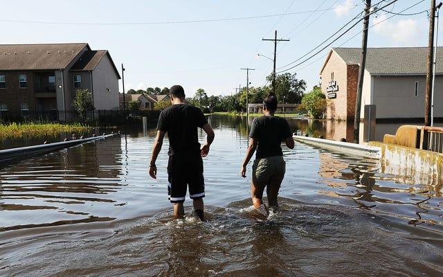 Cómo hablar sobre huracanes con negacionistas del cambio climático