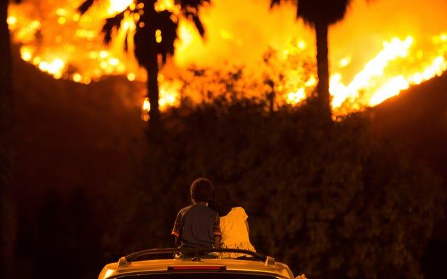 Niepokojąca liczba Amerykanów uważa, że osoby zaprzeczające zmianom klimatu zasługują na uderzenie klęskami żywiołowymi, wyniki badań