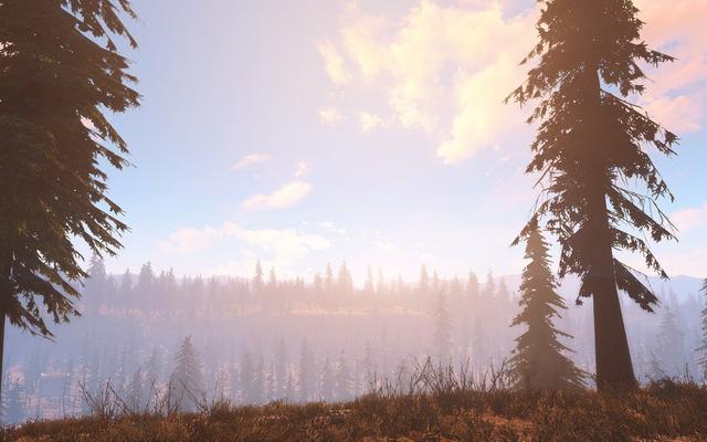 Фанатский проект Fallout: Cascadia стремится вернуть природу в пустоши