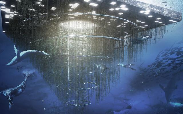 Un arrecife artificial flotante te permitiría caminar hacia las profundidades del océano