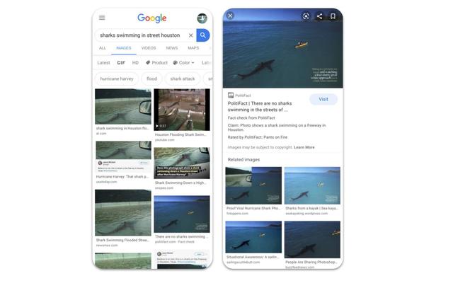 Google добавляет ярлыки для проверки фактов в поиск картинок