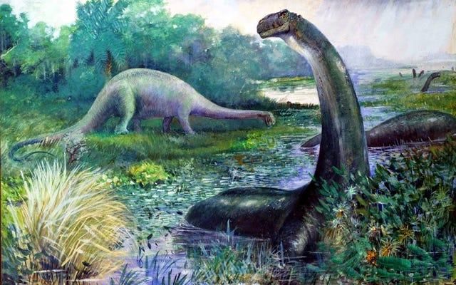 Các nhà khoa học nói rằng Brontosaurus nên được phục hồi như một loài khủng long đã biệt chủng
