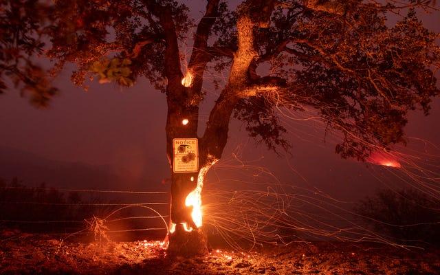 Las comunidades afroamericanas y nativas americanas tienen más probabilidades de perderlo todo en incendios forestales