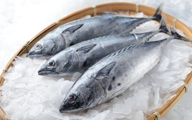 लास्ट कॉल: मछली को मारने का सबसे मानवीय तरीका भी इसे सबसे स्वादिष्ट बनाता है