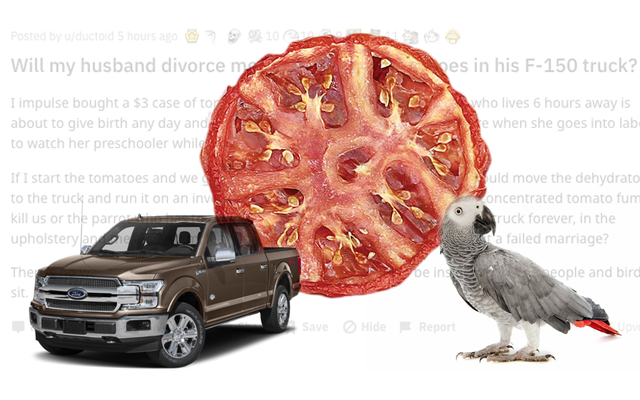 オウムとフォードF-150のトマトの脱水についてのこのRedditスレッドはとても混乱しています