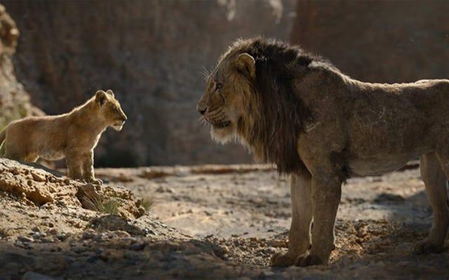 बैरी जेनकिंस शेर राजा का निर्देशन करेंगे किसी ने नहीं पूछा