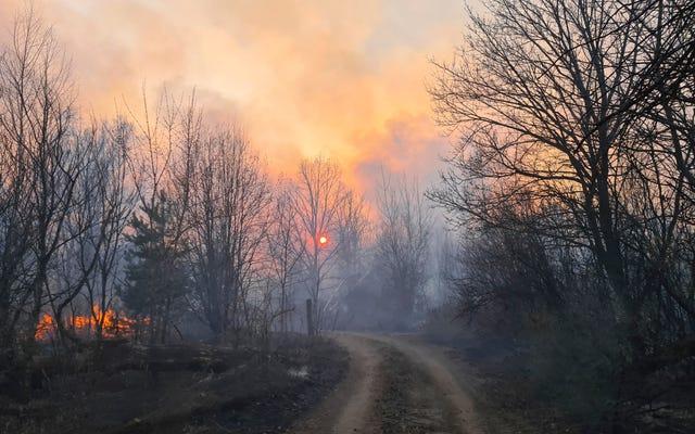 チェルノブイリ周辺の放射線は、森林火災後、通常の16倍です。