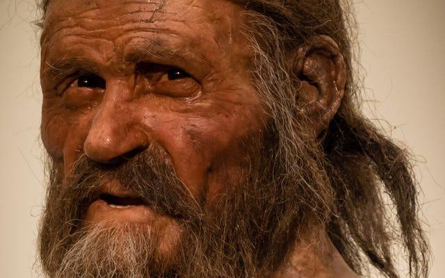 Investigasi baru mengungkapkan seperti apa jam-jam terakhir Ötzi si Manusia Es
