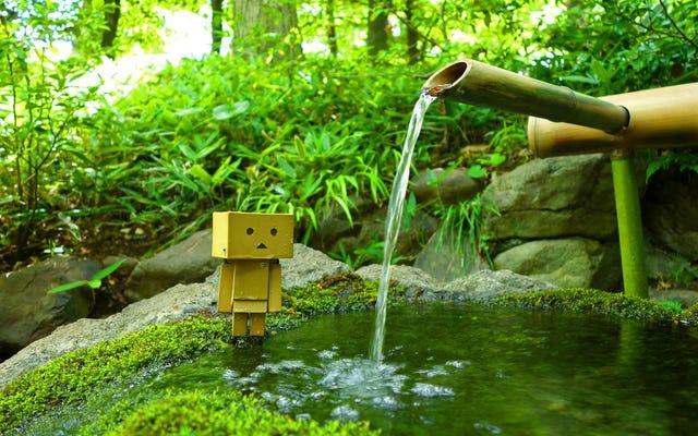 小さな箱型ロボットの目を通して日本を信じられないほど見る