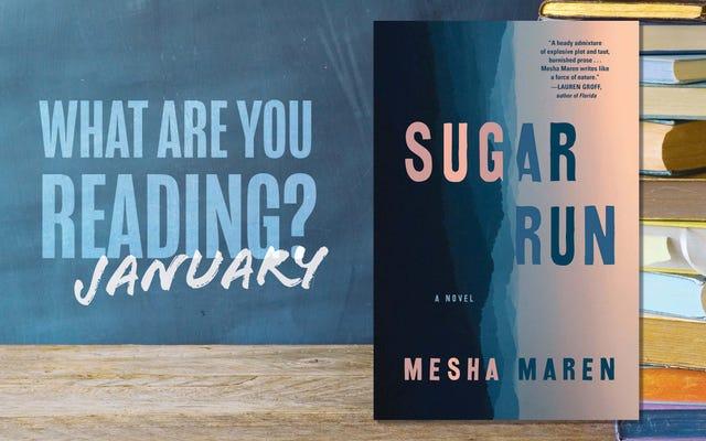 जनवरी में आप क्या पढ़ रहे हैं?