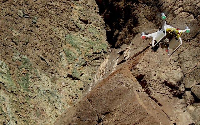 Ini Drone Vs. Raven sebagai Ilmuwan Berjuang untuk Menyelamatkan Kura-kura Gurun yang Terancam
