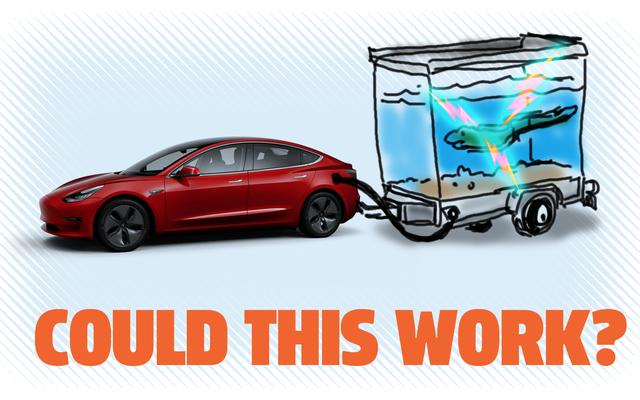 มาดูกันว่าการใช้ปลาไหลไฟฟ้าเพื่อชาร์จเทสลาของคุณเป็นความคิดที่ดีหรือไม่