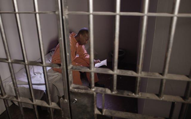 Zachodnia Wirginia pobiera od swoich więźniów 0,03 centa za minutę za przeczytanie bezpłatnych e-książek. Oto dlaczego to ma znaczenie