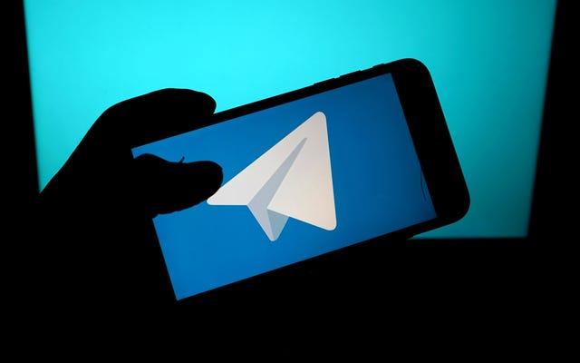 Telegram добавляет простой инструмент для ввода ваших данных в WhatsApp