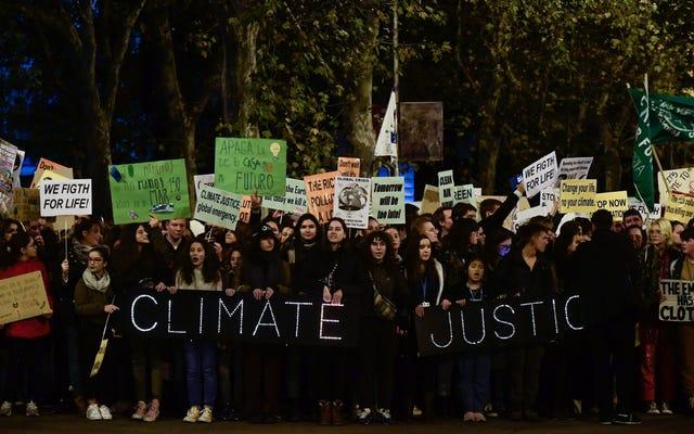I principali gruppi ambientalisti stanno finalmente diventando più diversificati