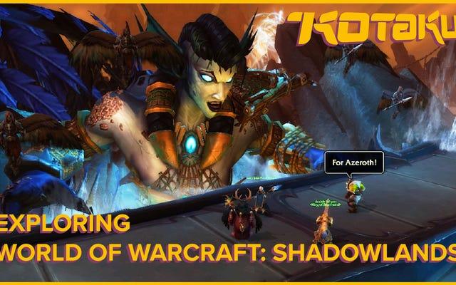 World of Warcraftの最初のいくつかのゾーンを探索する:Shadowlands