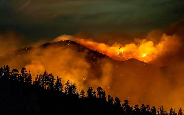 """Kalifornia ma swój pierwszy """"Gigafire"""" w historii współczesnej"""
