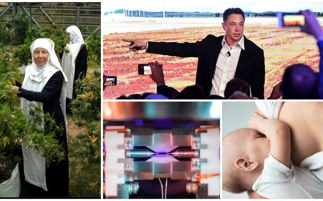 As freiras da maconha, a foto de um átomo, a promessa de Elon Musk. O melhor da semana