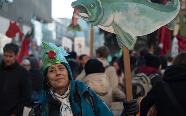 Canadá sabe cómo festejar mientras protesta por la inacción ante el cambio climático