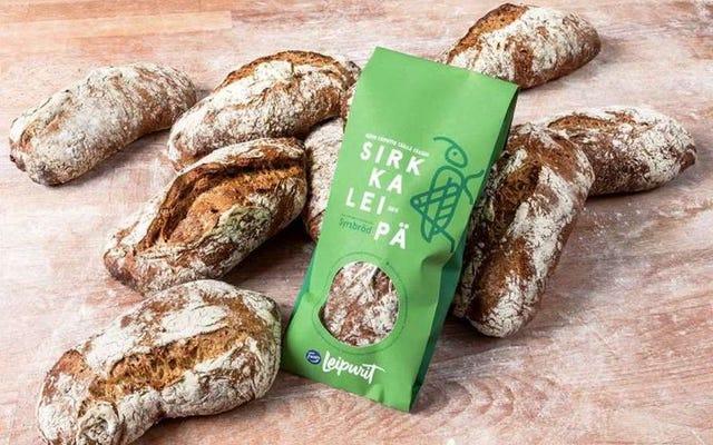 タンパク質源としてのクリケット:フィンランドでは、昆虫粉で作られたパンを販売しています